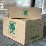 Thùng carton đựng dược phẩm chất lượng đảm bảo